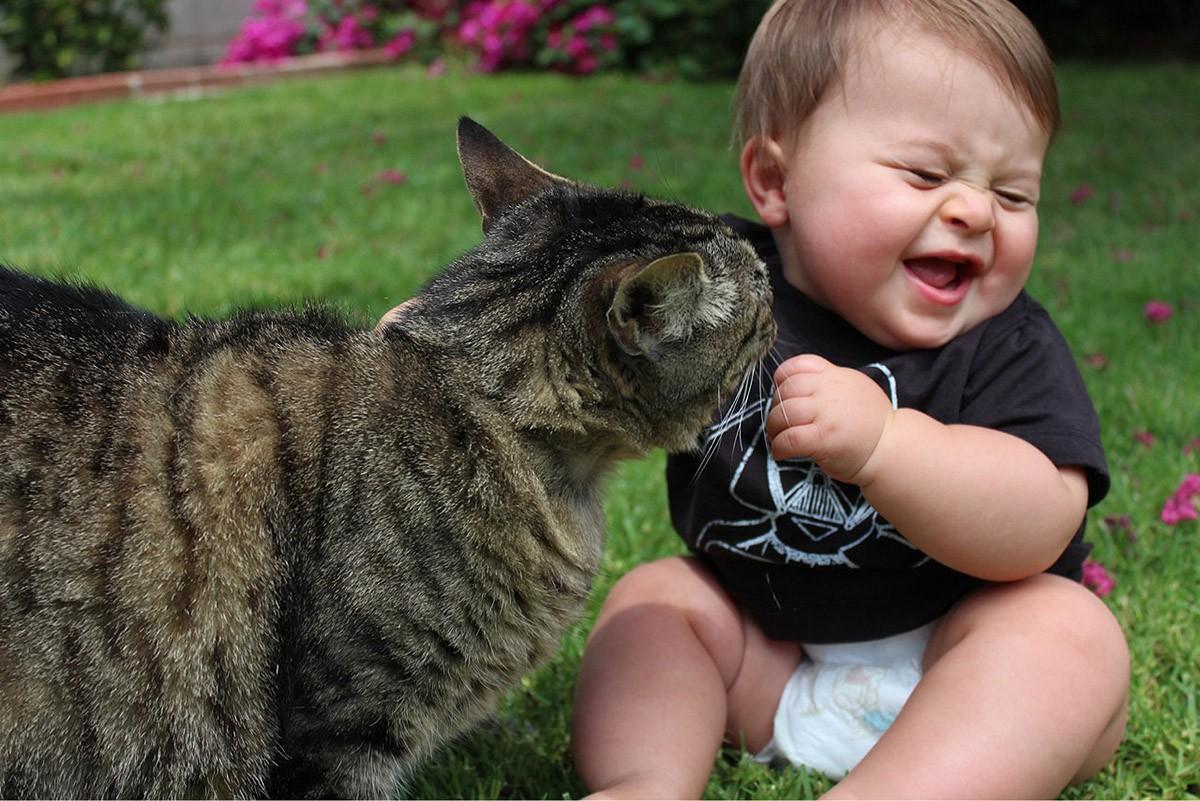 Смешные фотографии с детьми