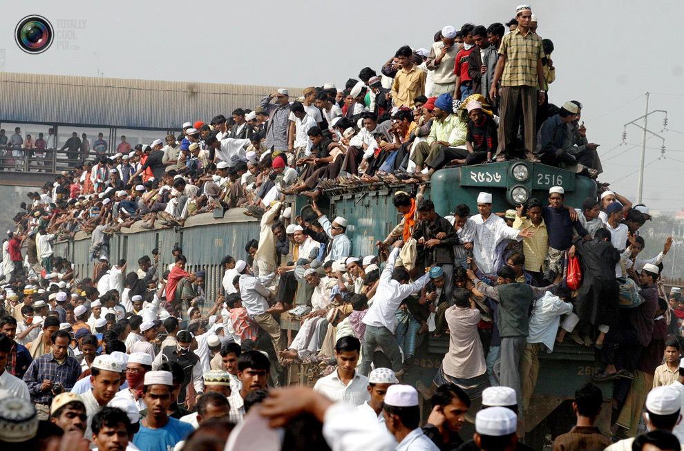overcrowding14 Нас стало слишком много, и это невозможно изменить