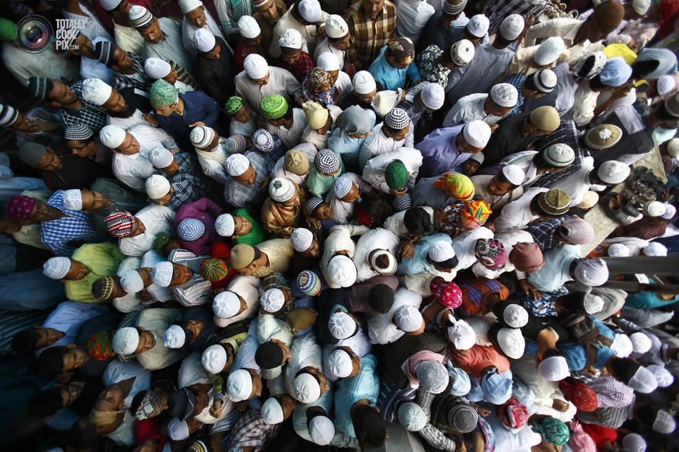 overcrowding19 Нас стало слишком много, и это невозможно изменить
