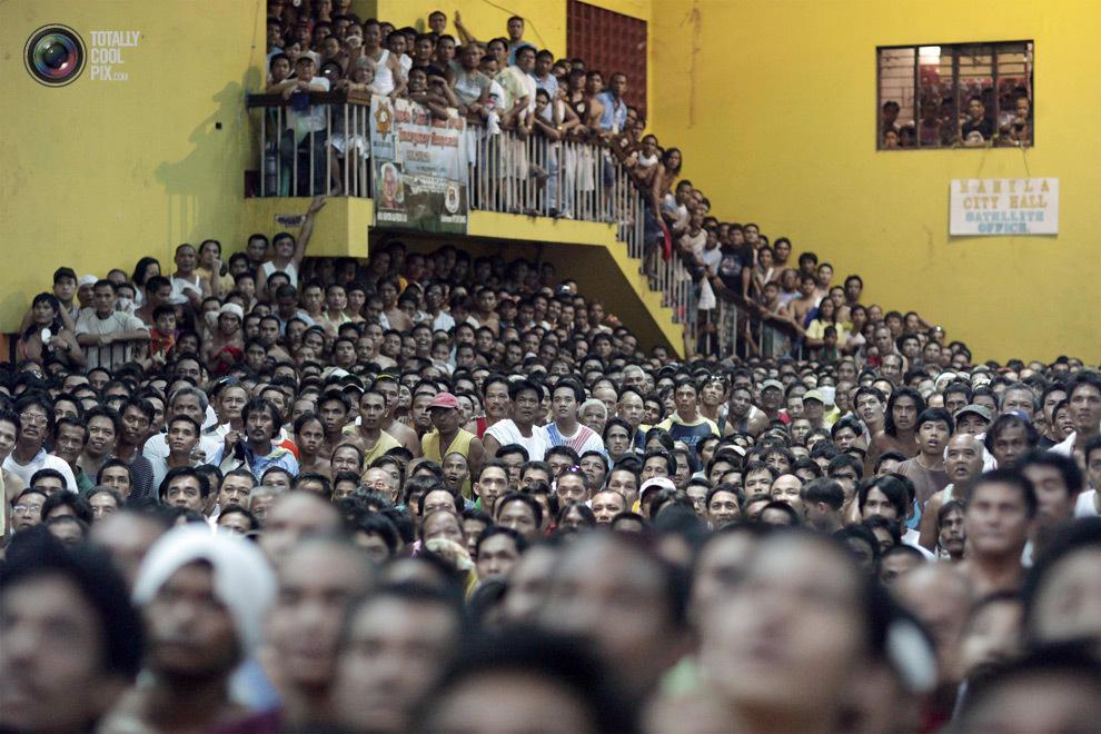 overcrowding29 Нас стало слишком много, и это невозможно изменить