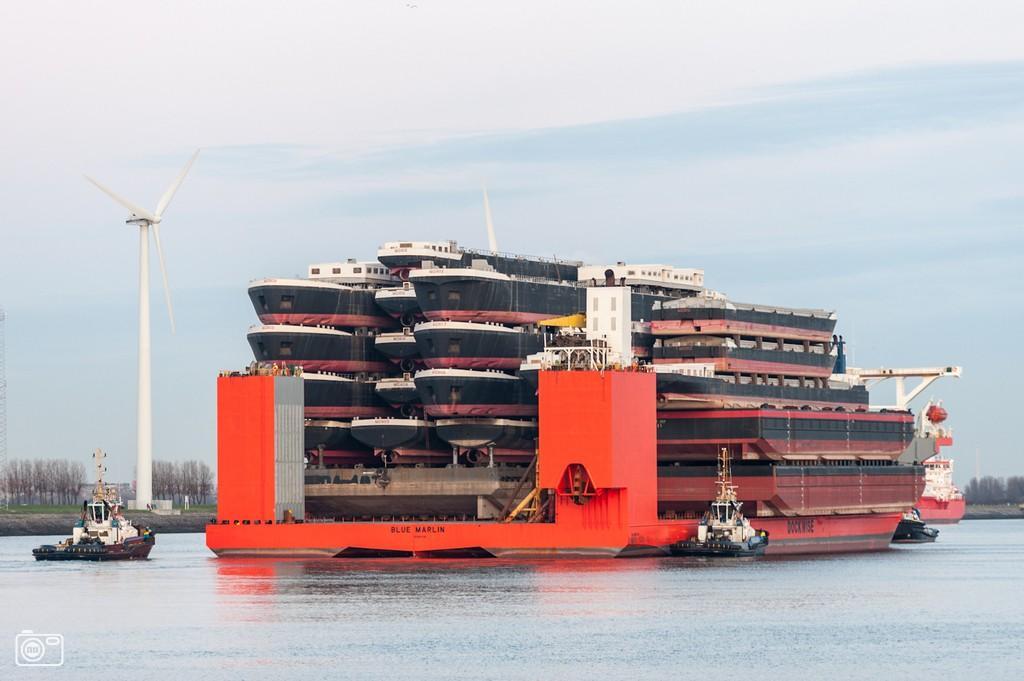 shipshippingships12 Морской гигант Blue Marlin