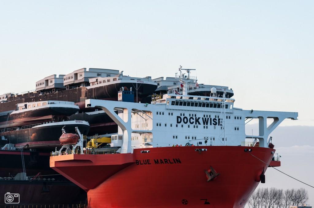 shipshippingships13 Морской гигант Blue Marlin