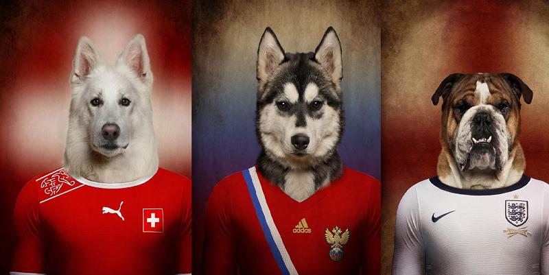 sobaki i futbol 0 Собаки, одетые в формы национальных сборных мира