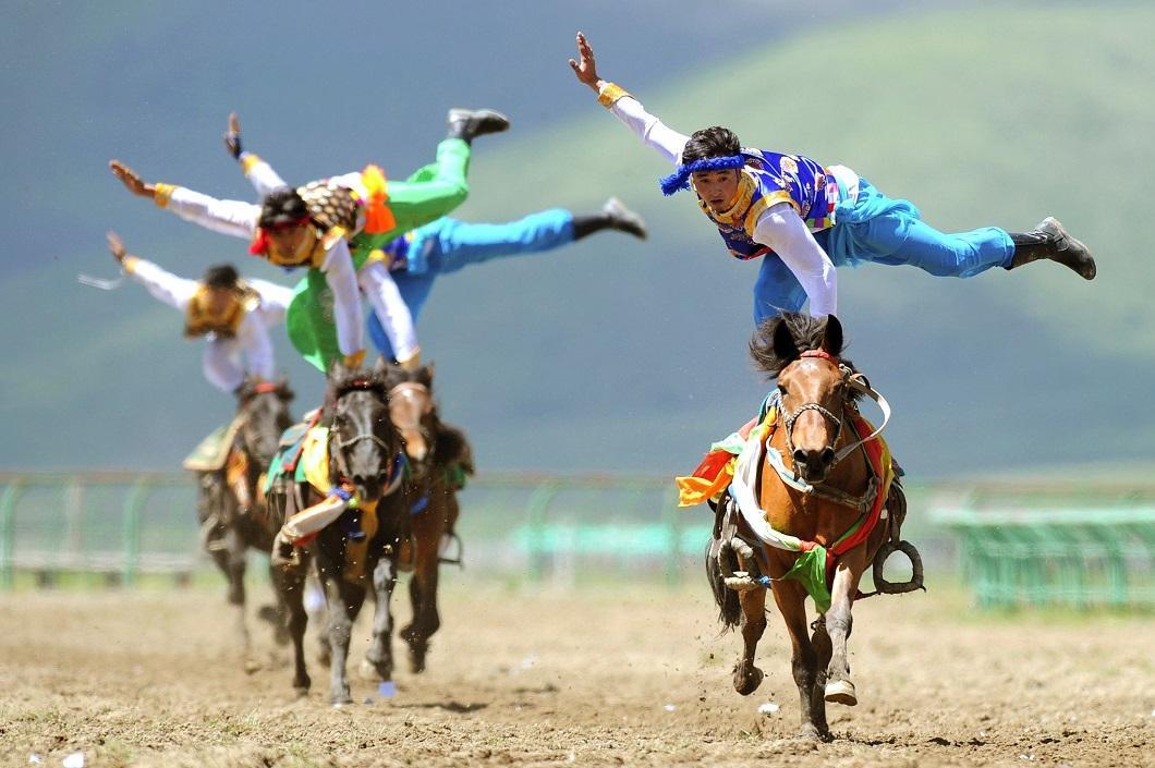 zhivotzaiyun 10 Лучшие фотографии животных со всего мира за неделю