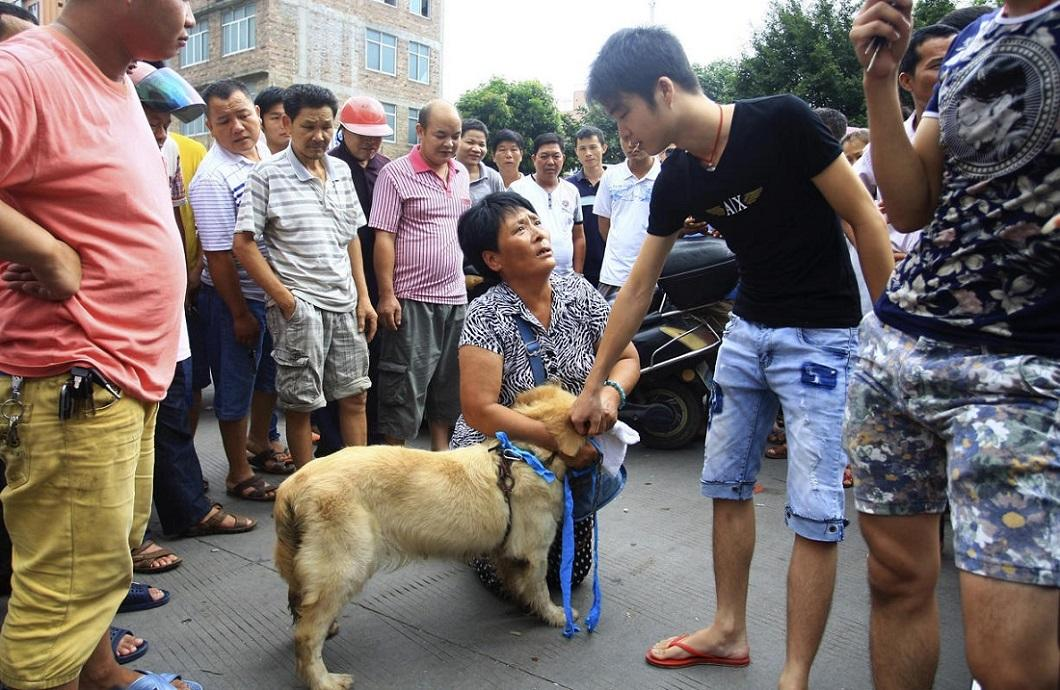 zhivotzaiyun 21 Лучшие фотографии животных со всего мира за неделю
