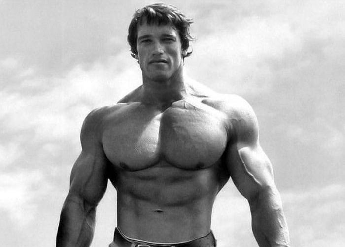 Schwarzenegger00 История успеха Арнольда Шварценеггера