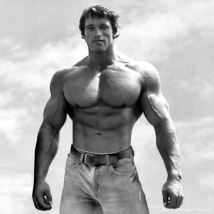 Schwarzenegger21 История успеха Арнольда Шварценеггера
