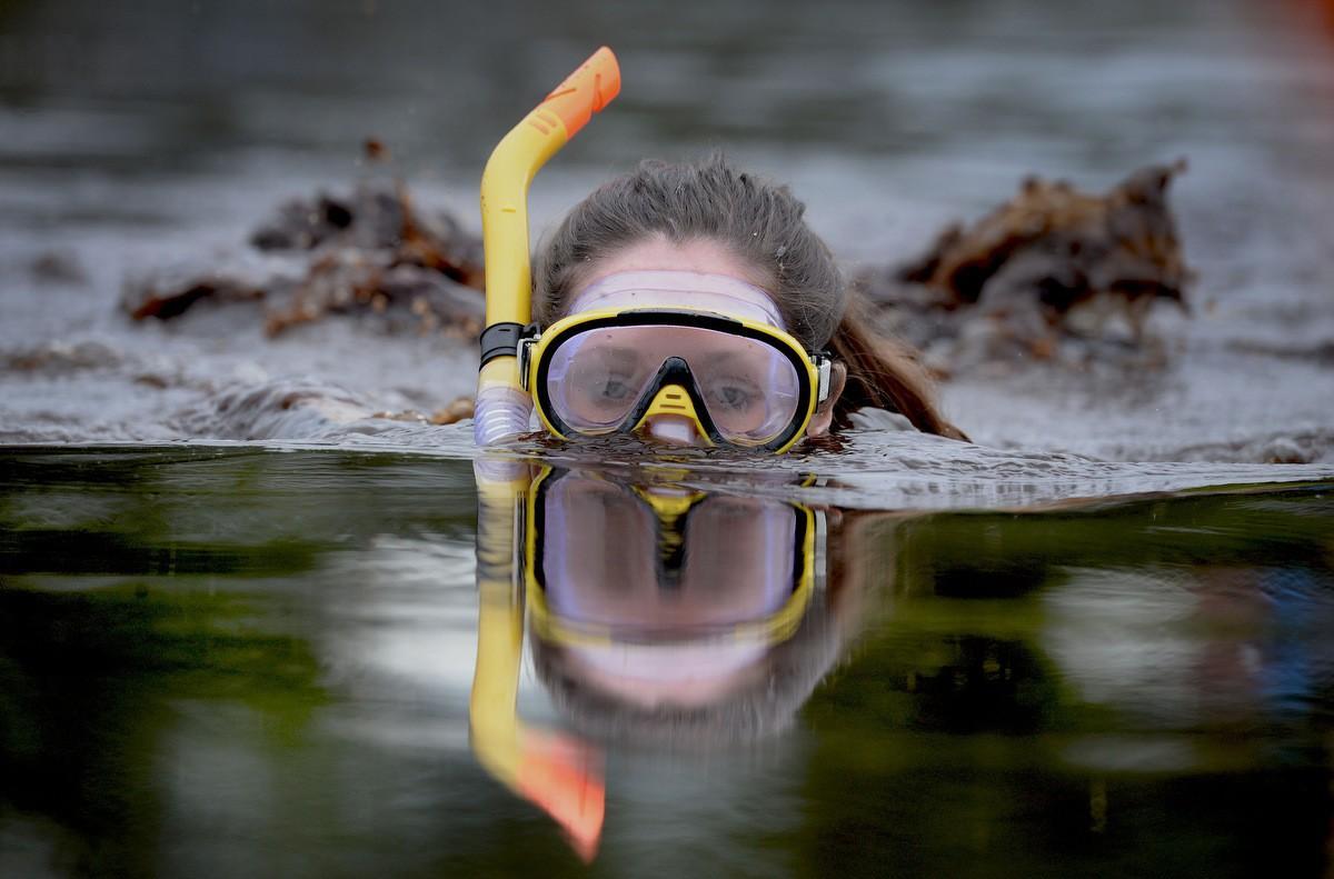 болото, заплыв