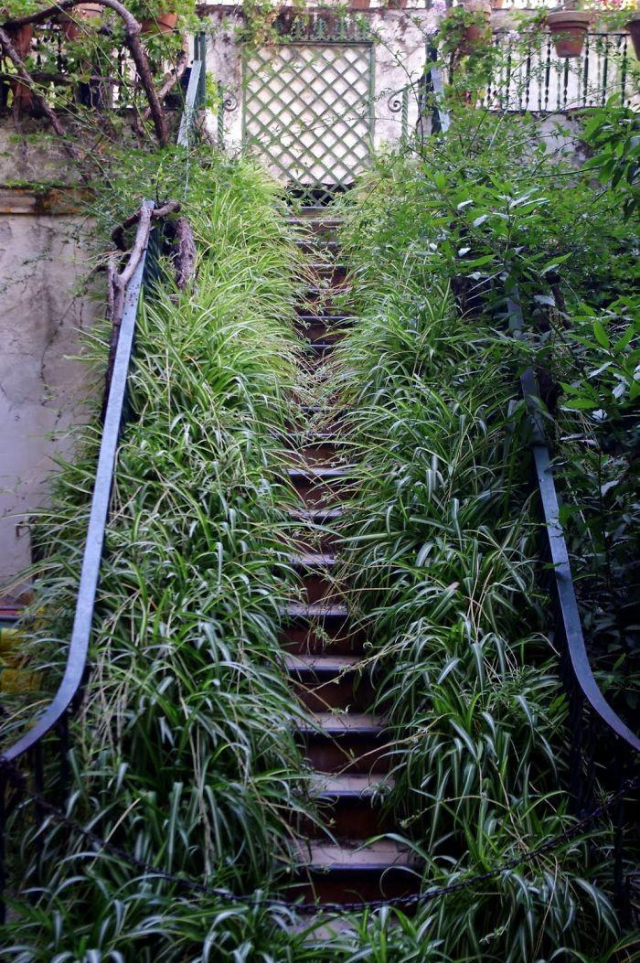 Stairs16 Самые красивые лестницы со всего мира