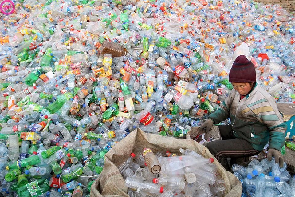 decomposition16 Сроки разложения мусора в фотографиях