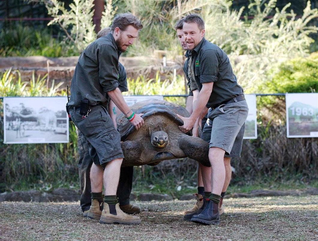 luchshie foto zhivotnyx 5 Лучшие фотографии животных со всего мира за неделю