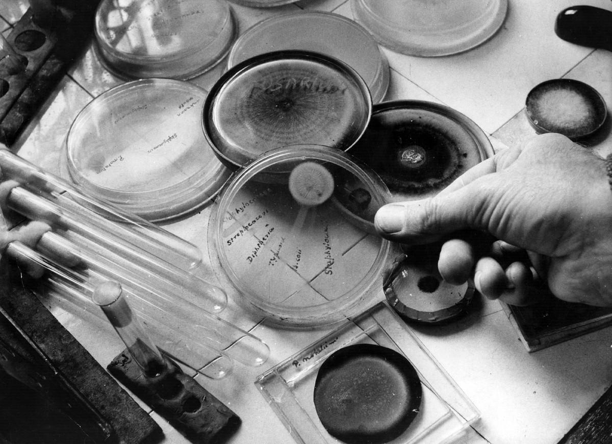 Десять научных открытий, которые произошли случайно История