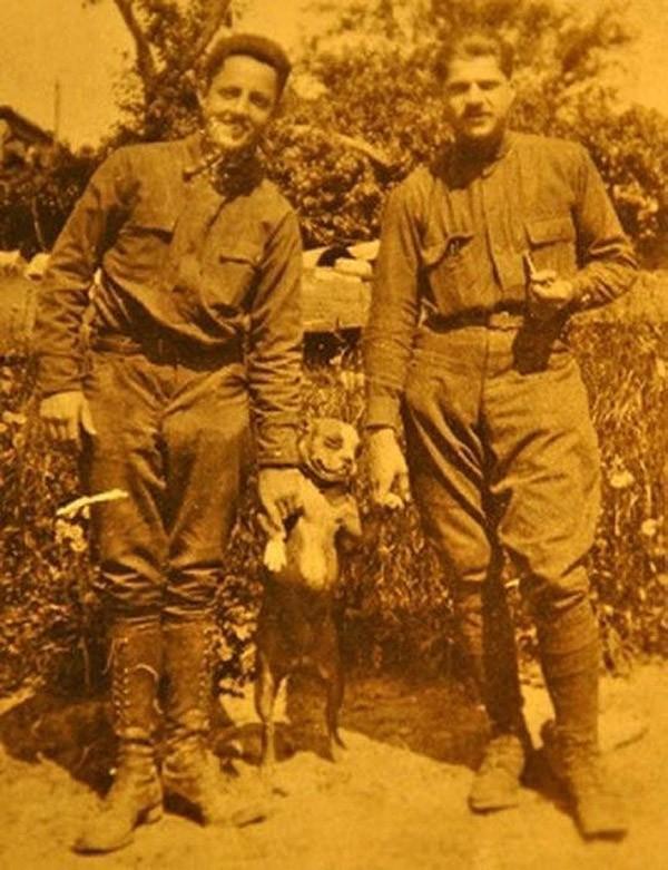 sgtstabby02 Сержант Стабби – героический пес Первой мировой войны