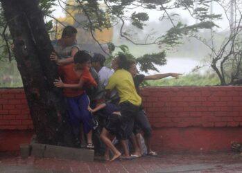 tayfun na fillipinax (0)