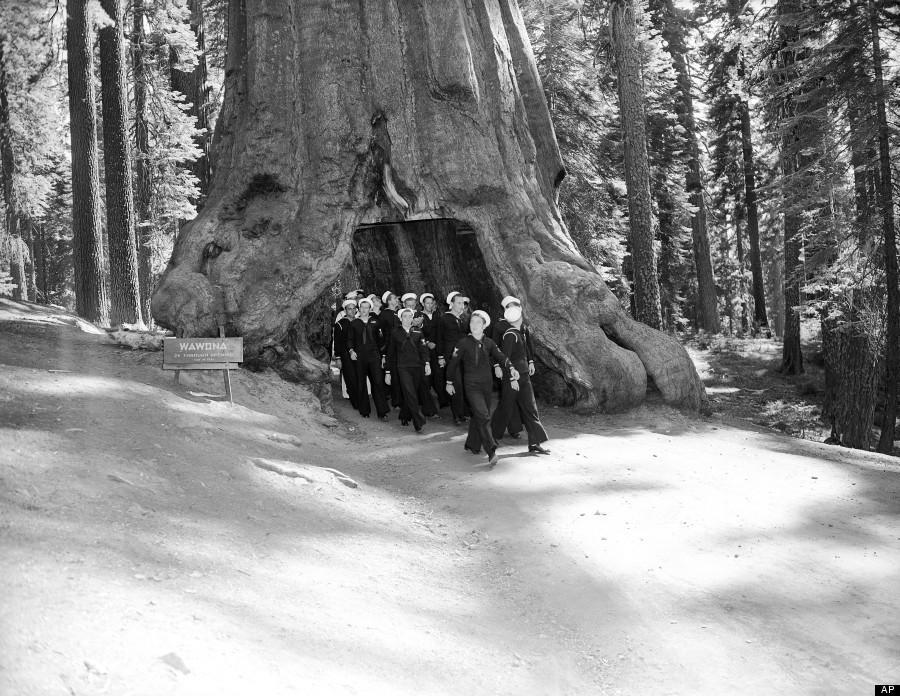 yosemite05 150 лет Йосемити: история национального парка в 15 фотографиях и одном таймлапсе