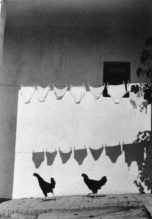 BnWphotos19 50 удивительных черно-белых фото