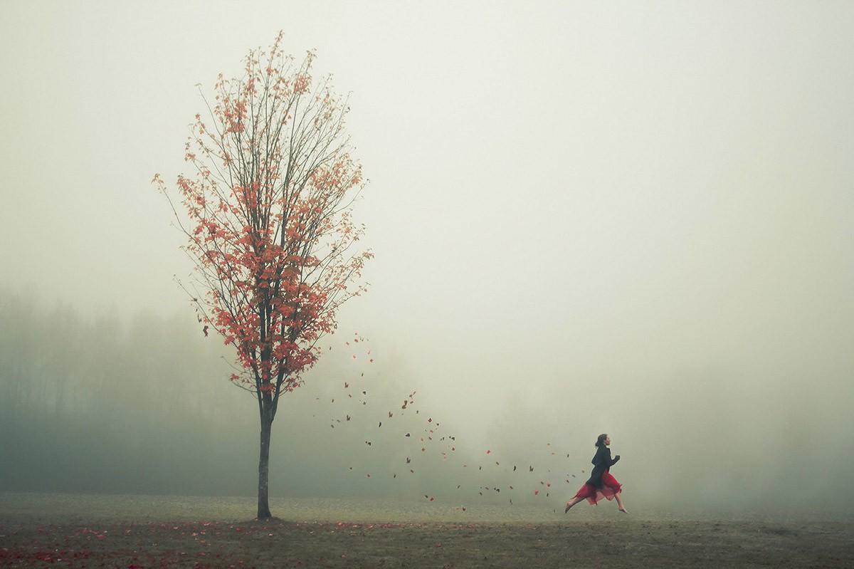 ElizabethGadd08 Любимый фотограф интровертов