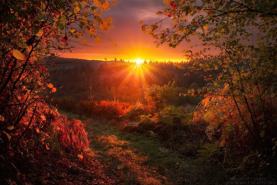 sunhunters13 Рассветы, закаты. Куда я, куда ты