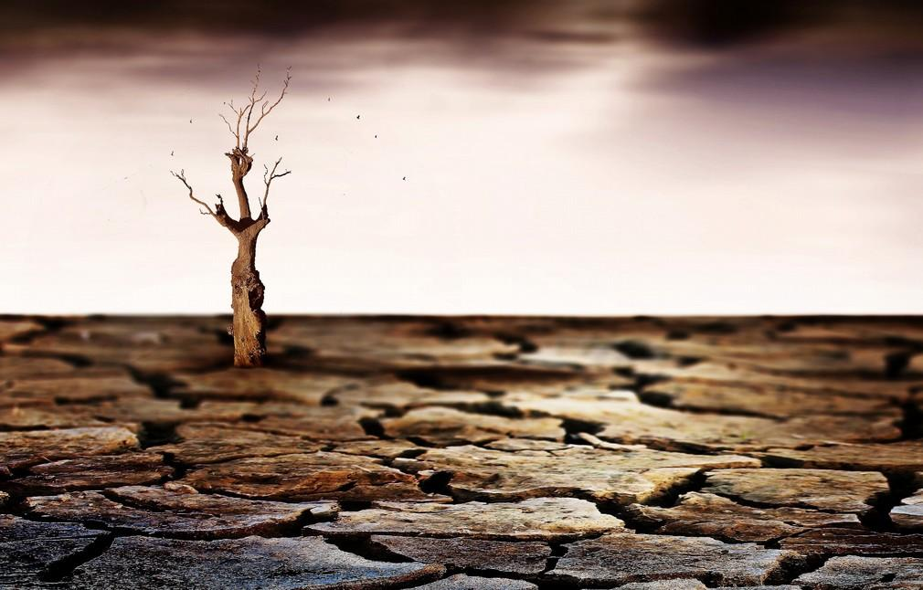 Balasko01 Адриенн Баласко: между небом и землей
