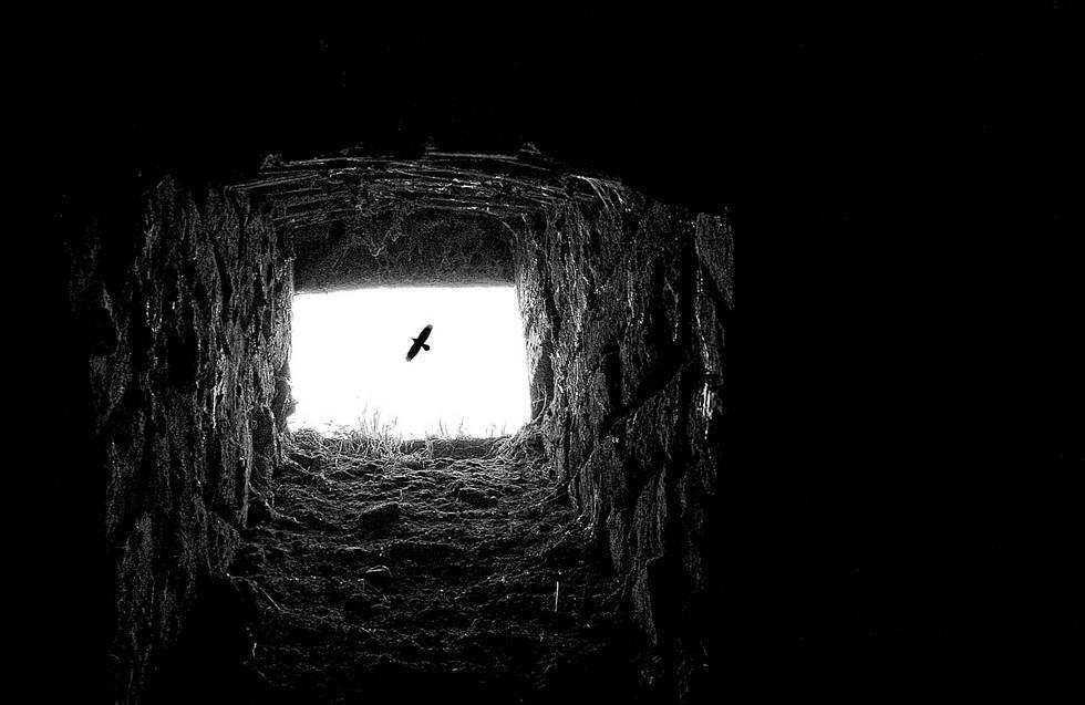 Balasko13 Адриенн Баласко: между небом и землей