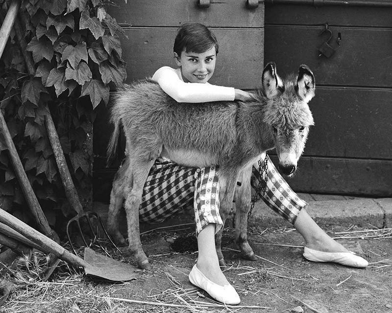 Hepburn08 Редкие фотографии Одри Хепбёрн