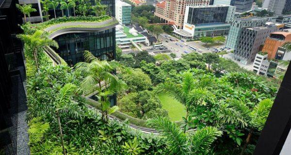 Уникальный сад на фасаде отеля в Сингапуре