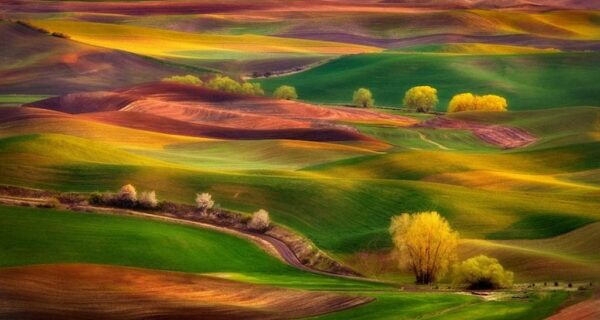 Волшебные пейзажи Чипа Филлипса