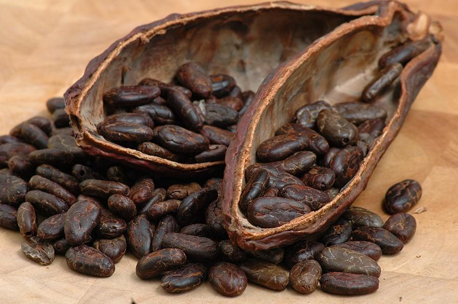 chocofacts09 25 «вкусных» фактов о шоколаде