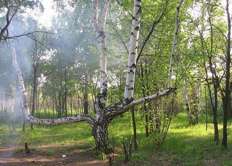 creepyrussia07 Самые жуткие места в России, наводящие леденящий ужас