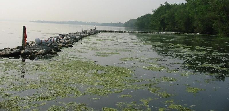dangerwater09 10 самых опасных рек и озер мира
