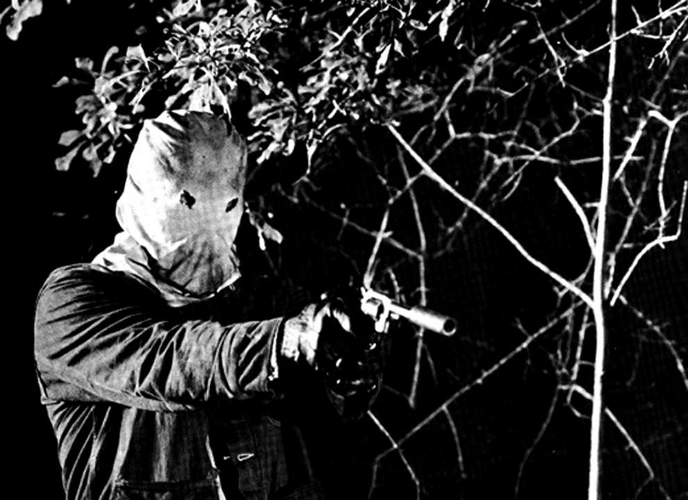7. Настоящий ночной охотник