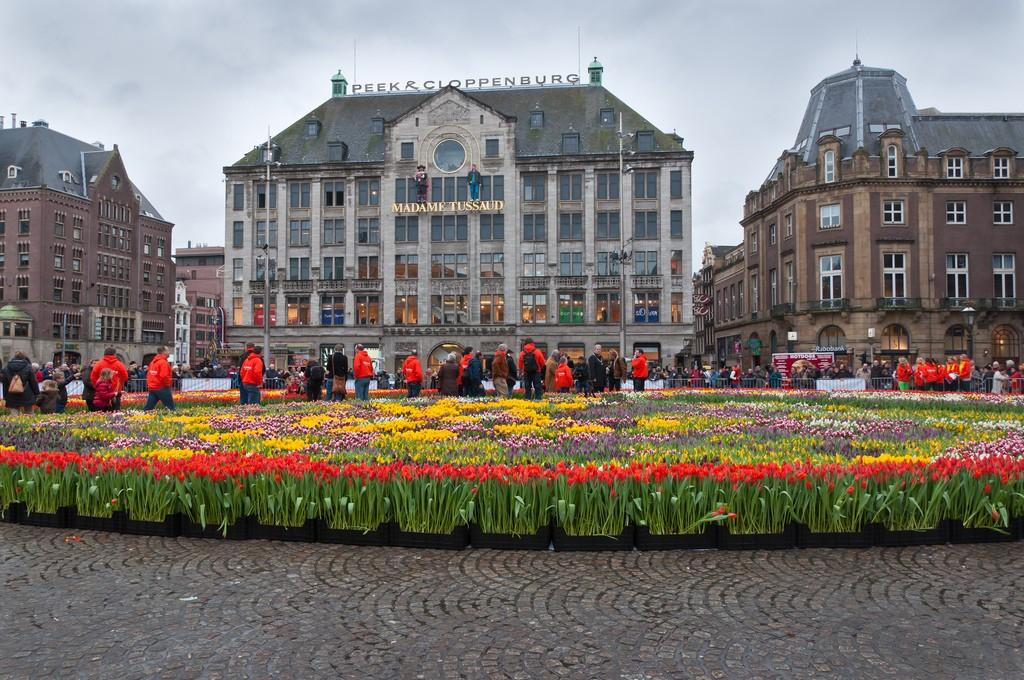 Amsterdam04 Амстердам в цифрах и фотографиях