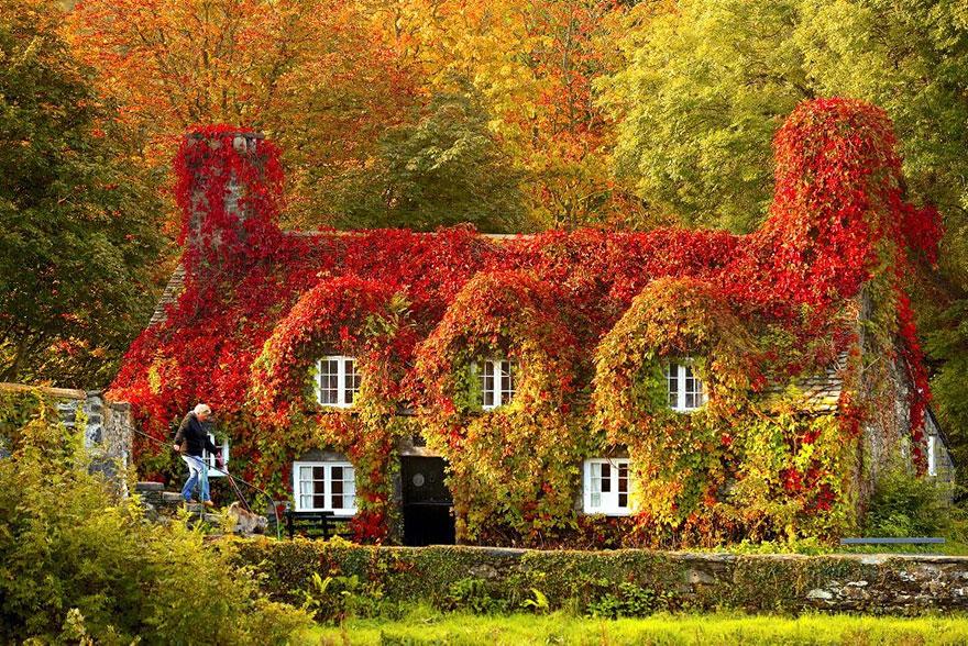 AutumnTransformation02 Чудесная дюжина удивительно красивых осенних превращений