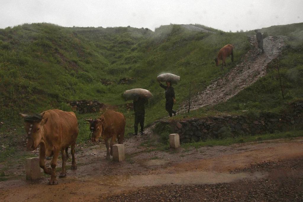 Guttenfelder04 Северная Корея без прикрас в объективе западного фотографа