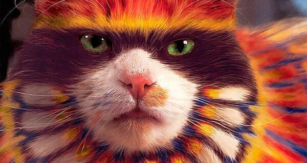 Кэтпейнтинг — это форма искусства или издевательство над животными?