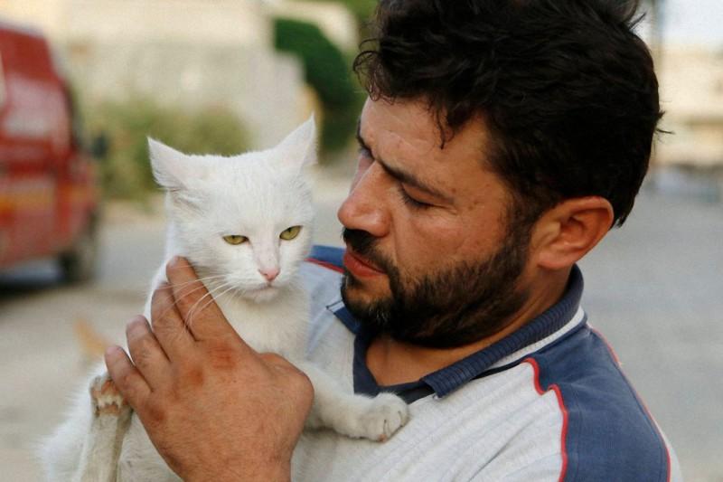 catsaviour03 800x533 Водитель из Сирии спасает брошенных кошек
