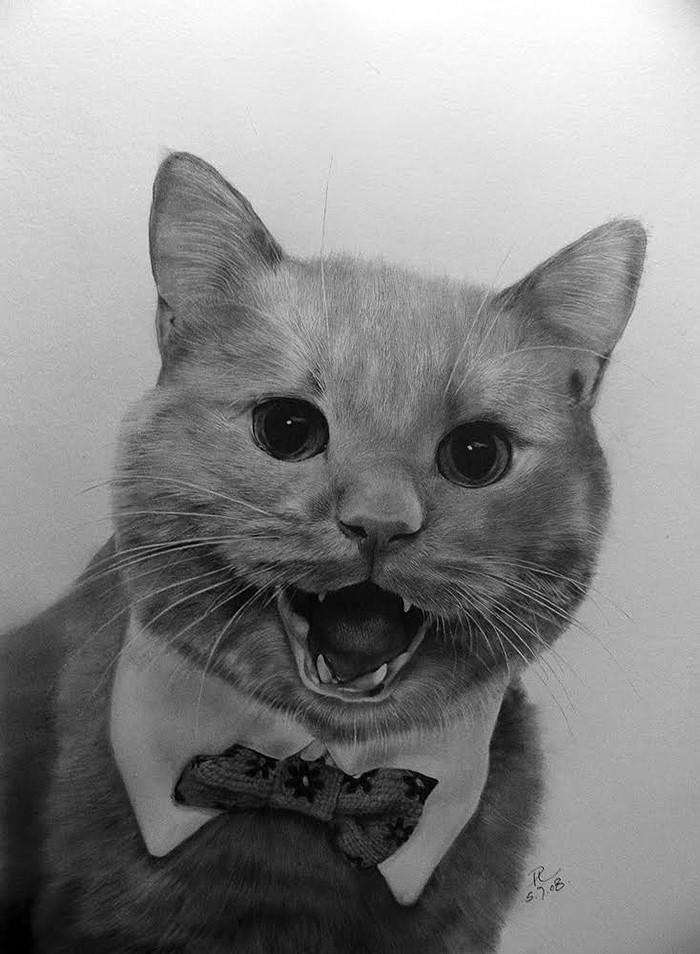 drawncats08 Мастер карандашного наброска — Пол Ланг