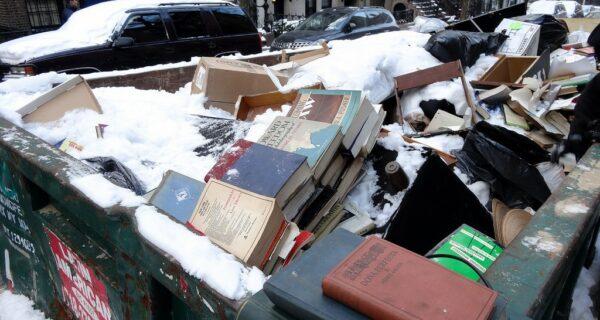Удивительные находки в нью-йоркском мусорном контейнере