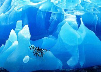 glaciersnIcebergs03