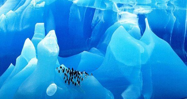 25 удивительных айсбергов и ледников со всегомира