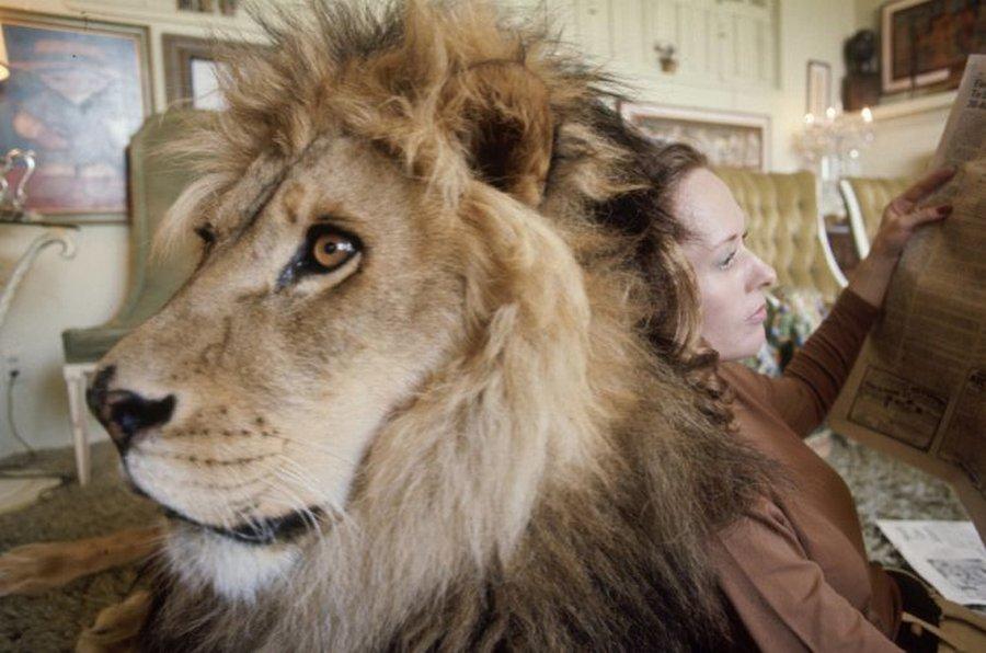 griffitnNeal07 Невероятные фотографии из 70 х: Мелани Гриффит и лев Нил