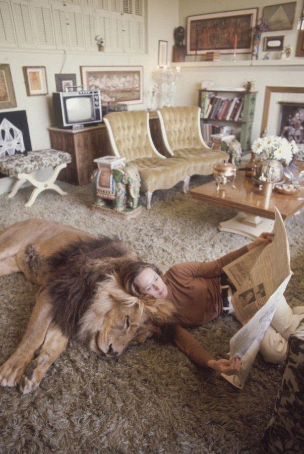 griffitnNeal09 Невероятные фотографии из 70 х: Мелани Гриффит и лев Нил