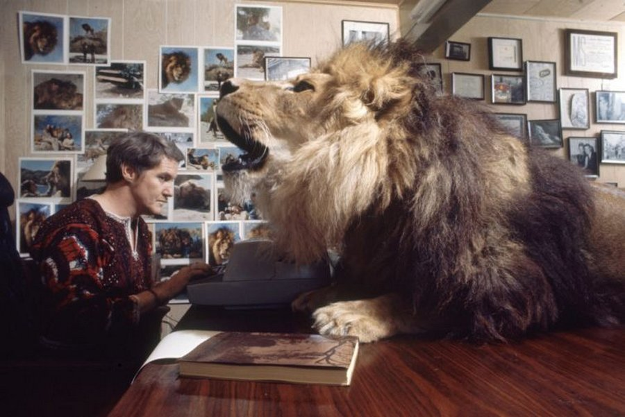 griffitnNeal14 Невероятные фотографии из 70 х: Мелани Гриффит и лев Нил