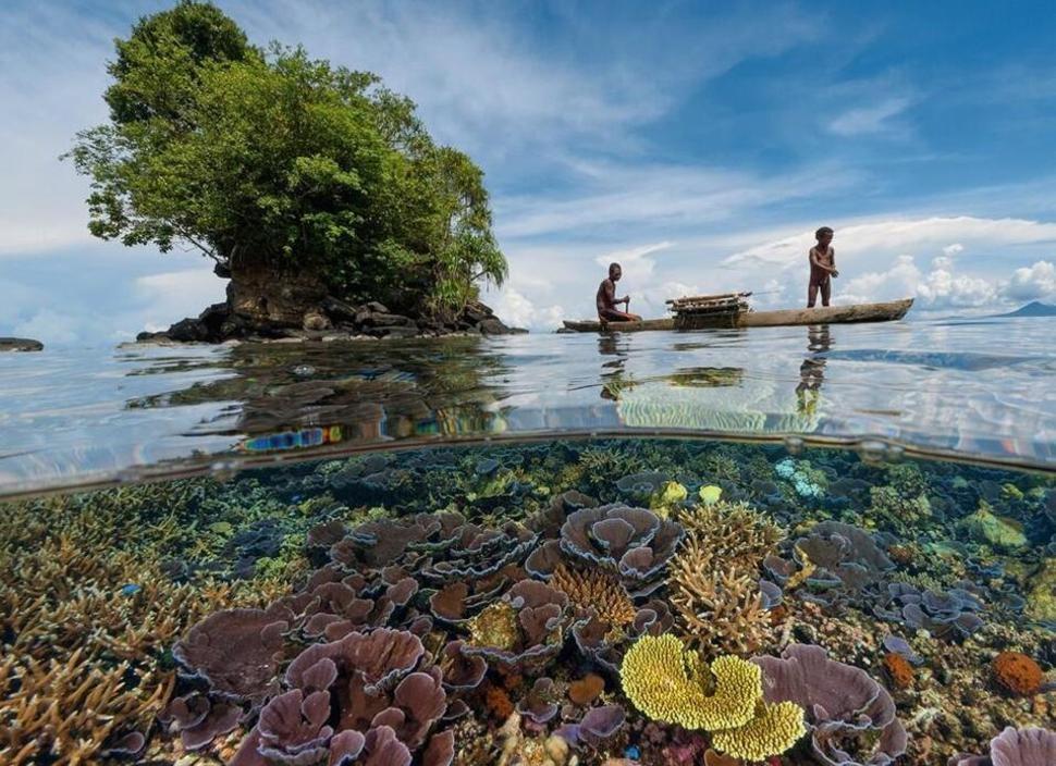 underwater03 Что скрывается под водой: 34 невероятные фотографии