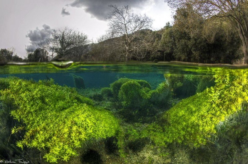 underwater05 Что скрывается под водой: 34 невероятные фотографии