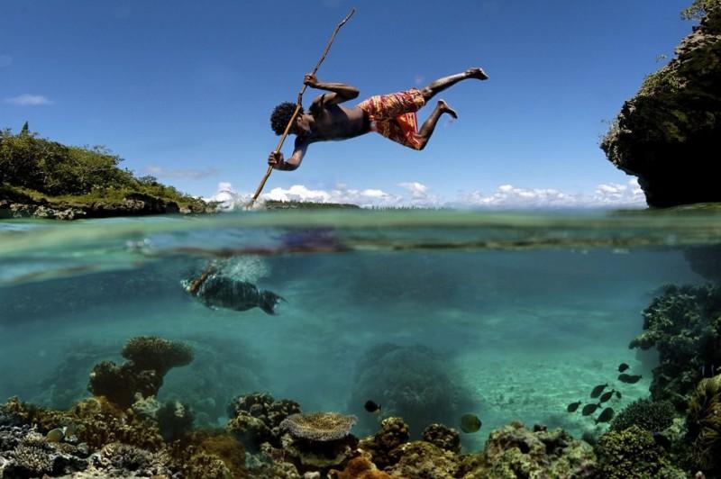 underwater12-800x532 Что скрывается под водой: 34 невероятные фотографии