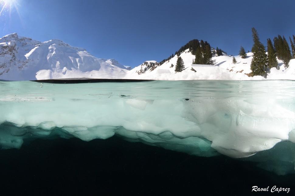 underwater29 Что скрывается под водой: 34 невероятные фотографии