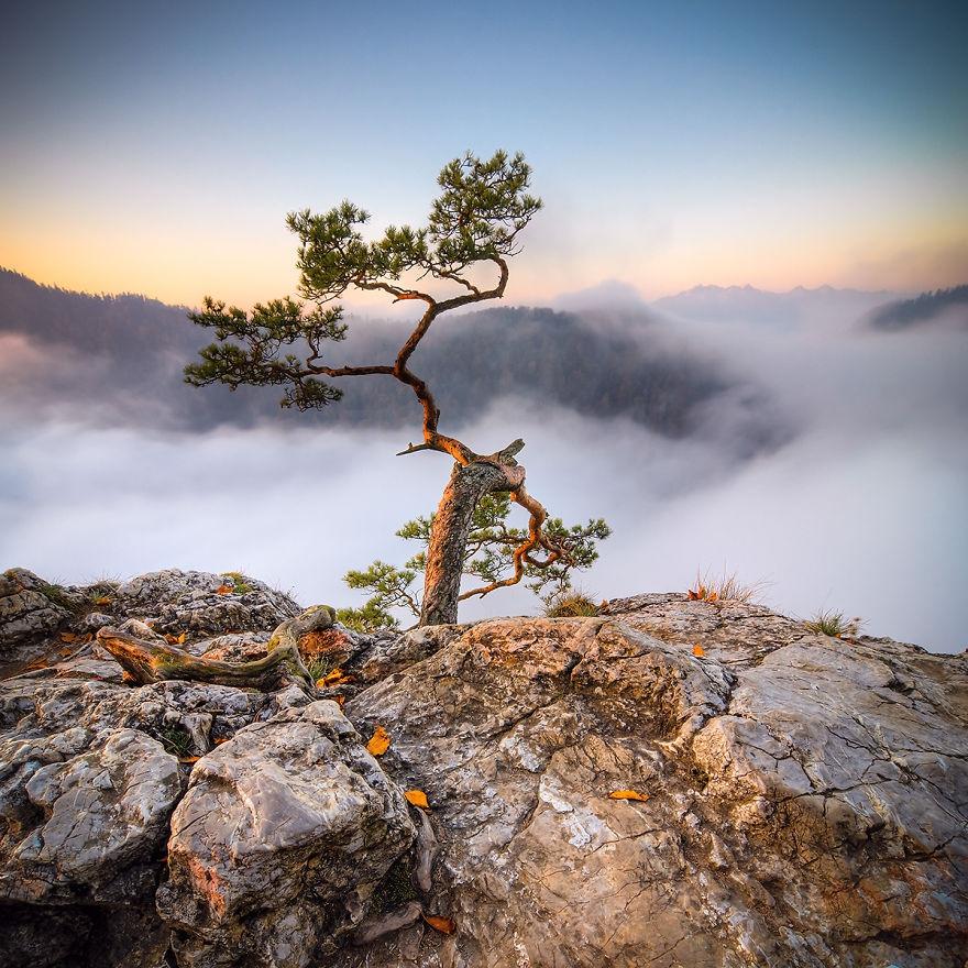 107 Татры — горы удивительной красоты