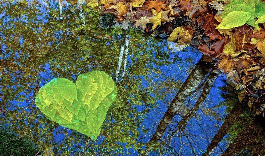 DavidAllen14 Всем любви и счастья: Удивительные инсталляции Дэвида Аллена