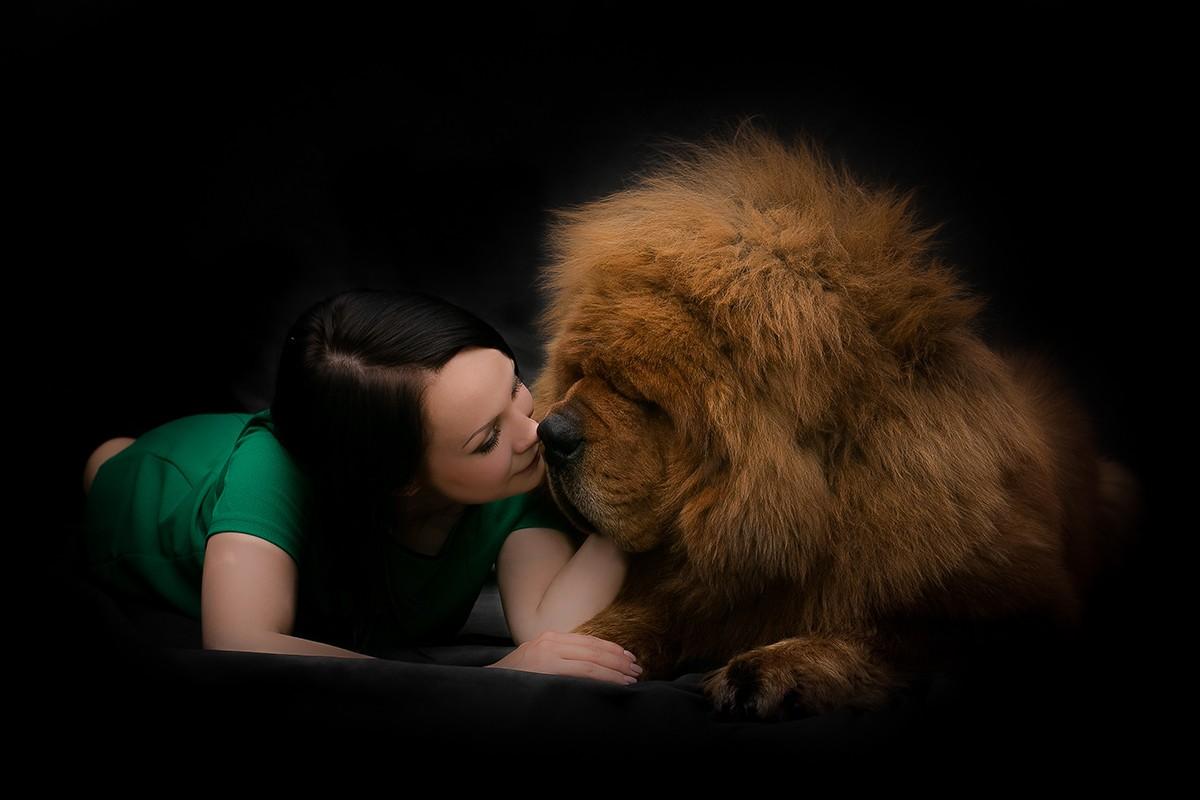 Gangsen09 Снежные львы: из Тибета в Казахстан